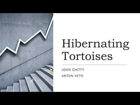 A Guide to Hibernating Tortoises